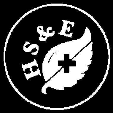 logo2HSE